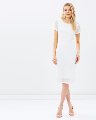 Atmos & Here – Sally Stretch Lace Dress – Bodycon Dresses (White)