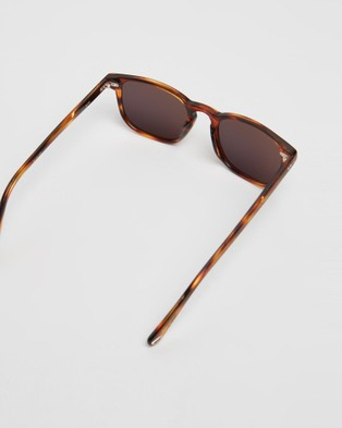 Pacifico Optical Blair - Square (Burnt Oak with Polarised Grey Lens)