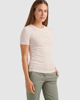 Sportscraft Sally Stripe Tee - T-Shirts & Singlets (multi)