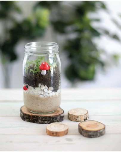 Poppy & Daisy - Mini Garden Kit