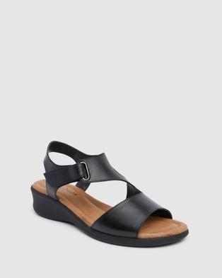 Wide Steps Patty - Heels (Black Glove)