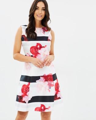 Dorothy Perkins – Stripe Floral Prom Dress – Printed Dresses Multi