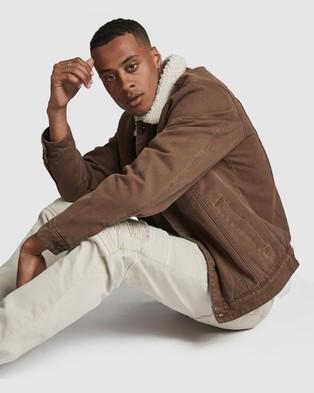 Cotton On - Borg Denim Jacket - Denim jacket (Chocolate Canvas) Borg Denim Jacket