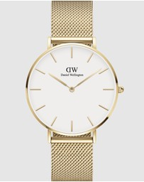 Daniel Wellington - Petite Evergold 36mm