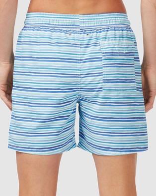 Tom & Teddy Stripe Boardshorts - Swimwear (Blue, Green & White)