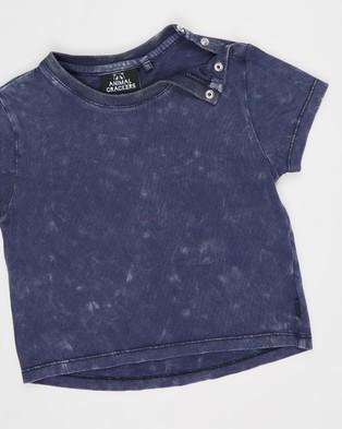 Animal Crackers Suburban SS Tee   Babies - T-Shirts & Singlets (Navy)
