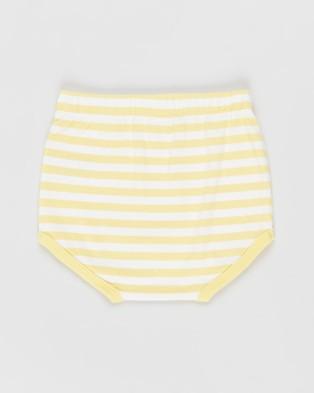 Cotton On Baby Stanley Shorties   Babies - Bloomers (Hannah Stripe Sunshine & Vanilla)