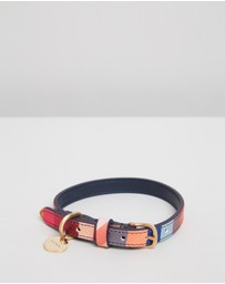Paul Smith - Dog Collar