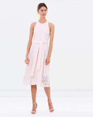 Ginger & Smart – Envision Dress – Dresses (Blush)