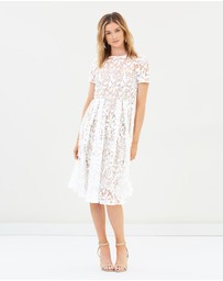 Cooper St - Snapdragon Fit and Flare Lace Dress