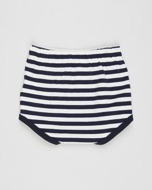 Cotton On Baby Stanley Shorties   Babies - Clothing (Hannah Stripe Navy Blazer & Vanilla)