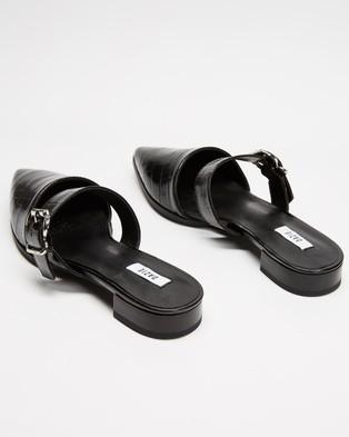 Dazie Jarid Flats - Flats (Black Croc)