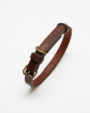 Barbour - Wax Leather Dog Collar Pets (Olive)
