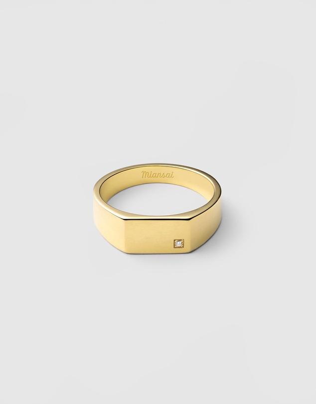 Men Geo Signet Ring with Diamond