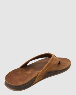 Billabong Brunswick Leather Thongs - Sandals (BROWN)