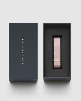 Daniel Wellington - Nato Strap Petite 16 Rosewater Watch Band   For Petite 36mm - Watches (Gold) Nato Strap Petite 16 Rosewater Watch Band - For Petite 36mm