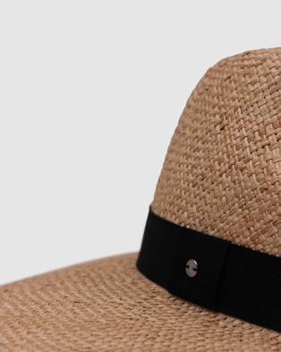 Ace Of Something Burro Fedora - Hats (Natural)