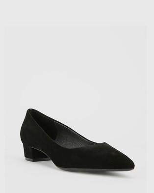 Wittner Armin Suede Pointed Toe Low Block Heels - Heels (Black)