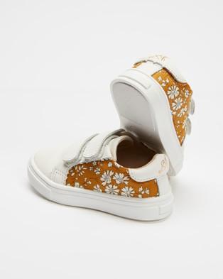 Anchor & Fox Wonderland Sneakers - Sneakers (Yellow & White )