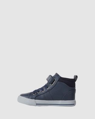 CIAO Maverick Hi Tops - Sneakers (Navy)