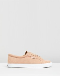 Superga - Suede - Men's