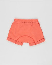 Cotton On Baby - Sawyer Shorts - Babies