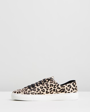 Mollini Osky Leather Sneakers - Sneakers (Ocelot Pony)