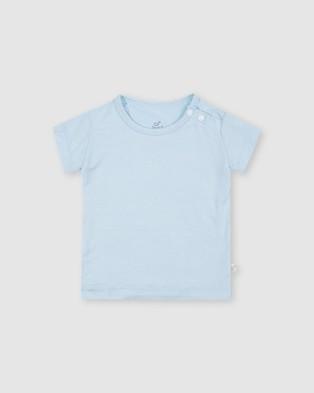 Boody Organic Bamboo Eco Wear - 3 Pack Baby T Shirts T-Shirts & Singlets (Chalk/Sky/Sky Stripe) 3-Pack