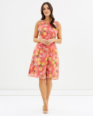 Review – Tutti Fruiti Dress – Printed Dresses Pink