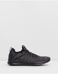 Puma - Ignite Flash EvoKNIT Running Shoes - Men's
