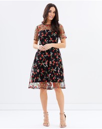 Dorothy Perkins - Rose Embroidered Dress