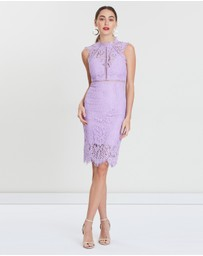Bardot - Lace Panel Dress