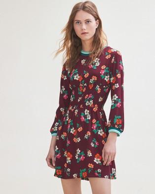 Maje – Roskea Dress Print