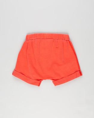 Cotton On Baby Sawyer Shorts   Babies - Shorts (Red Orange)