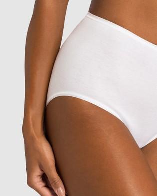 HANRO Cotton Seamless Maxi Briefs - Briefs (White)