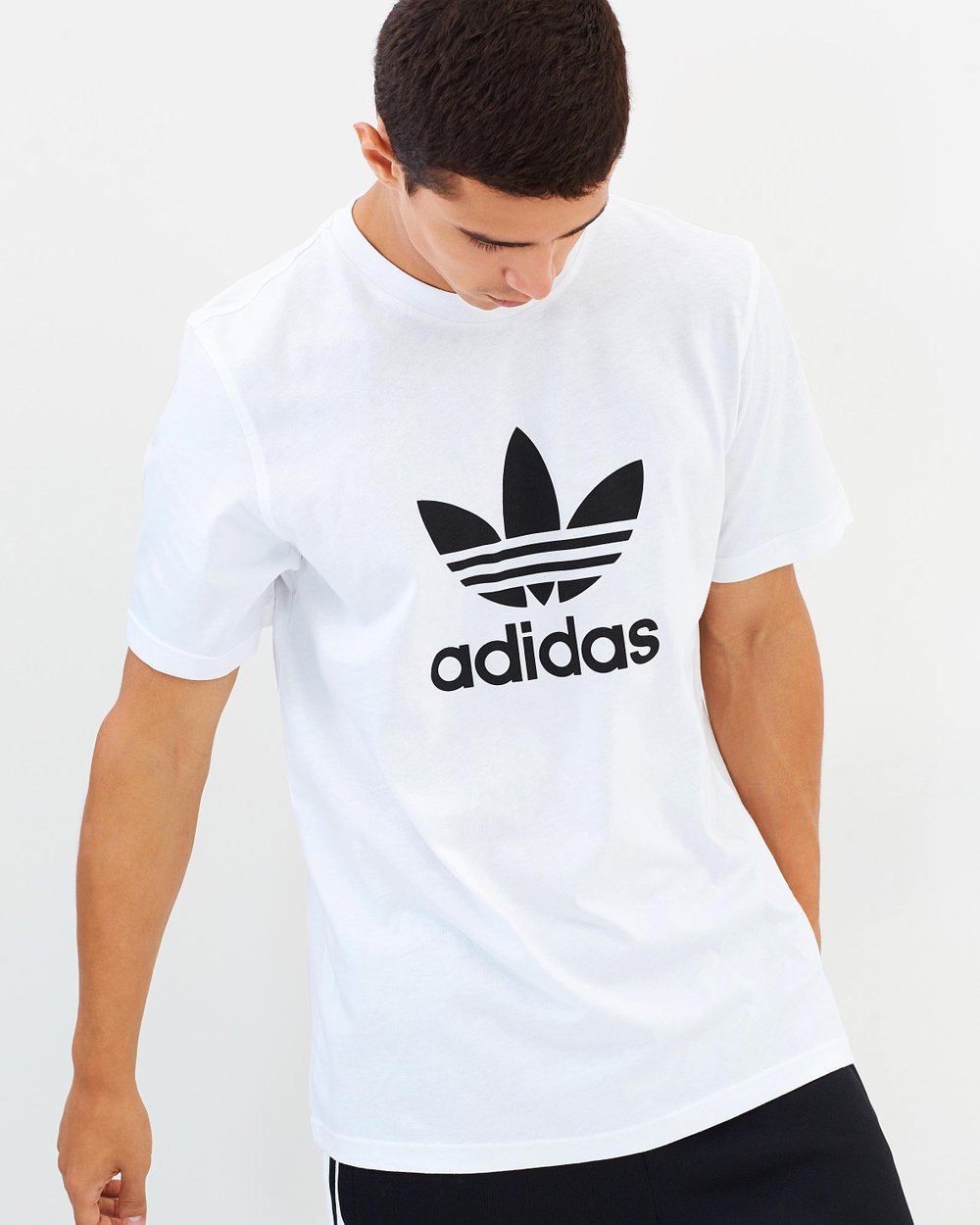 brand new 40c8a a8a39 Adicolor Trefoil T-Shirt by adidas Originals Online  THE ICONIC  Australia