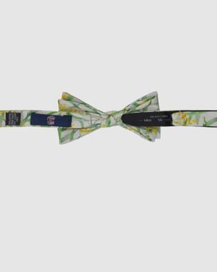 Peggy and Finn Wattle Bow Tie - Ties & Cufflinks (Oatmeal)