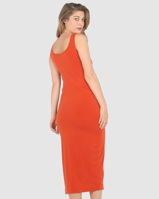 Faye Black Label Bianca Fitted Dress - Bodycon Dresses (Siren)