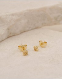 By Charlotte - Luminous Gold Stud Earrings