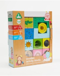 Early Learning Centre - Wooden Activity Blocks - Babies
