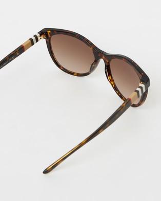 Burberry Striped Check - Sunglasses (Havana & Brown Gradient)