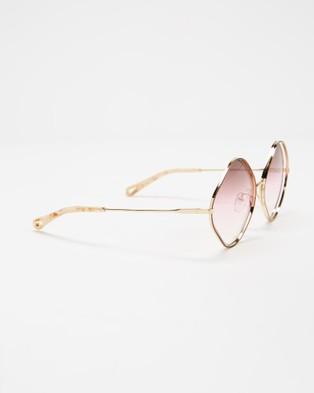 Chlo?? CE159S - Sunglasses (Havana & Brown Rose Sand)
