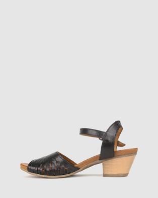 Airflex Judy Laser Cut Sandals - Sandals (Black)