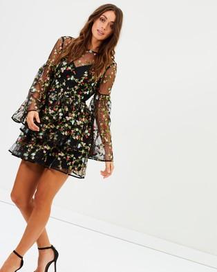 Buy Talulah - Objective Flare Mini Dress Black & Floral Embroidery -  shop Talulah dresses online