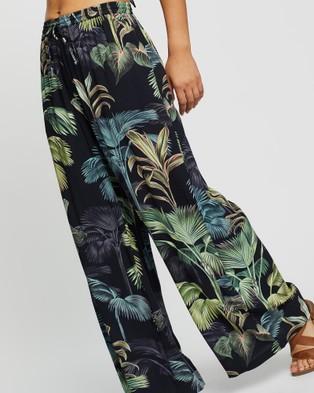 JETS Evoke Pants - Swimwear (PalmGreen)