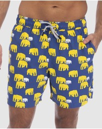 Tom & Teddy - Elephant Boardshorts