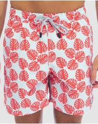 Tom & Teddy - Leaf Boardshorts