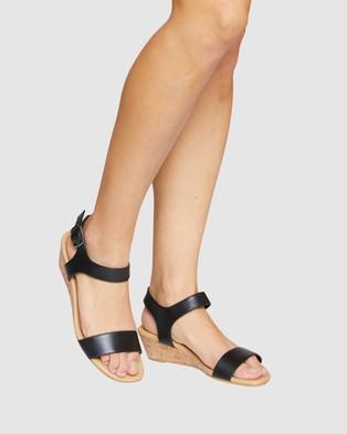 Easy Steps Cable - Heels (BLACK)