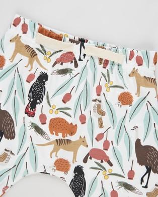 Cotton On Baby Mikko Shorts   Babies - Shorts (Vanilla & Outback Mates)