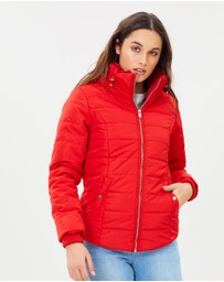 Dorothy Perkins - Faux Fur Collar Padded Jacket
